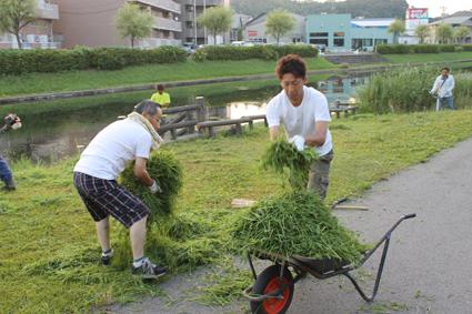 草刈機で刈った草を集めます(ビオトープ清掃)