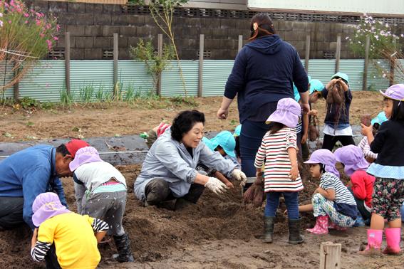 園児とともに芋をほる木村会長
