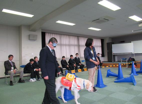 盲導犬との歩行体験